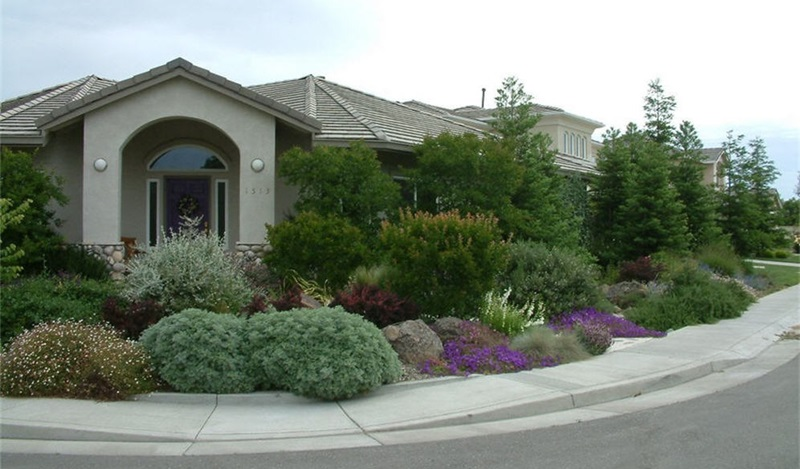 River friendly landscape rebate city of sacramento for Landscaping rocks sacramento