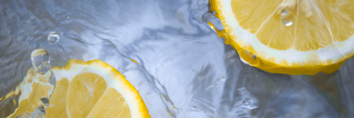 Lemon slices submerged in water.