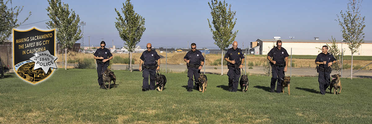K9 and their handlers