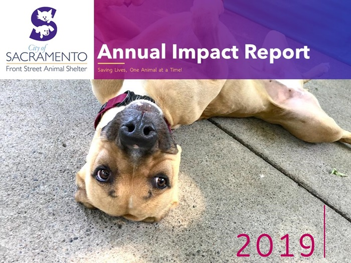2019 Annual Impact Report Slide 1