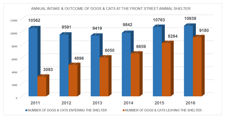 Graph of Intake and Outcome of Animals from 2011 to 2016