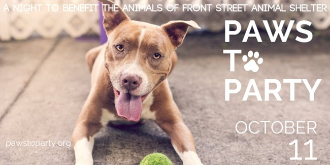 Paws To Party 2019 Banner