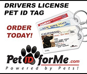 Pet ID For Me Drivers License Pet Tag