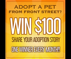 Share Your Adoption Story Front Street Monthly Winner