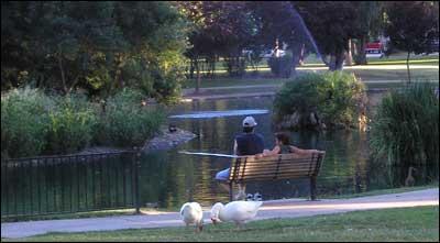 Mckinley Park City Of Sacramento
