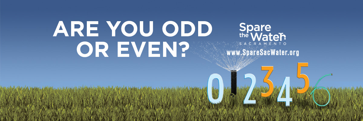 Spare Sacramento water - Are you odd or even?