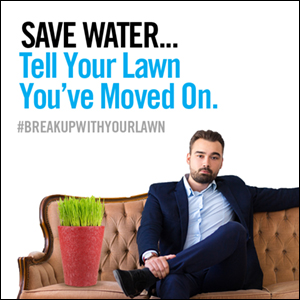 save water...tell your lawn you've moved on. #breakupwithyourlawn. Man sitting on couch next to plant.