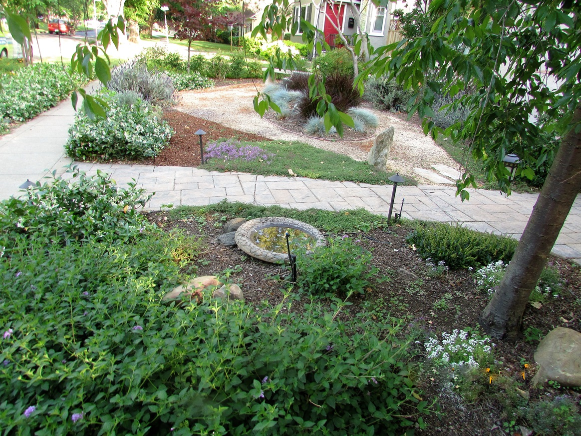 Landscape Design Assistance Program City Of Sacramento