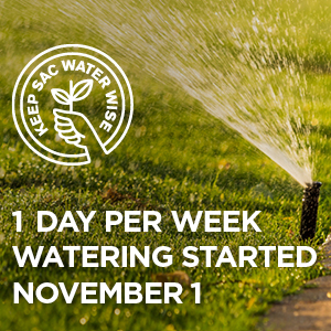 1 day per week watering started November 1st