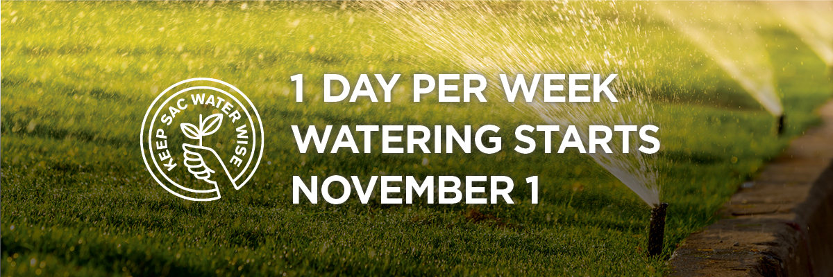 1 day per week watering started November 1. Background of grass with sprinklers on.