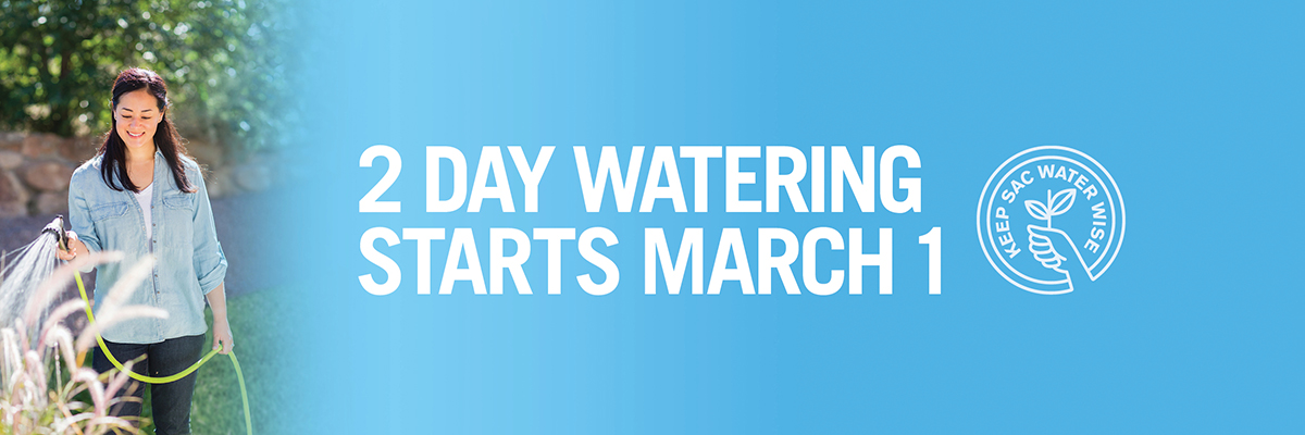 2 day per week watering starts March 1. Background with women water plants.