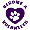 Become A Volunteer Front Street Animal Shelter