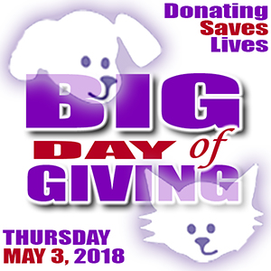 Front Street Animal Shelter Big Day of Giving 2018