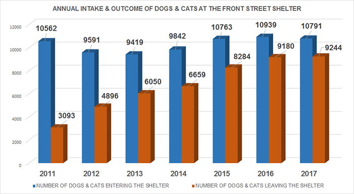 Graph of Animals Entering and Leaving the Front Street Animal Shelter from 2011 to 2017