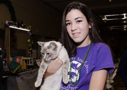 Volunteer at cat show