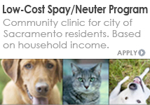 Low Cost Spay Neuter