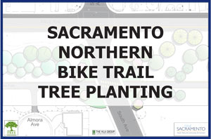 Sacramento Northern Bike Trail Tree Planting