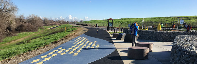 Photo of new trail pavement with fish design